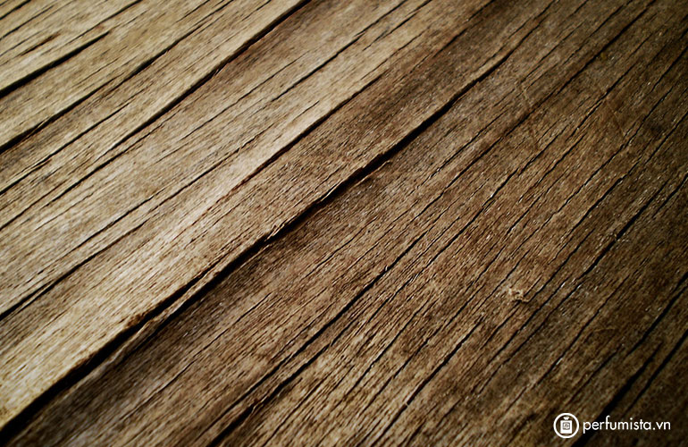 Hương gỗ